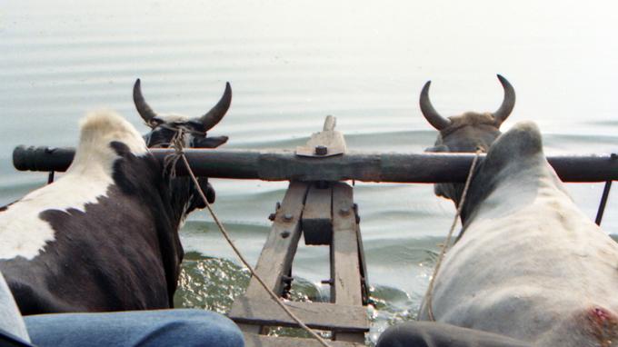 Transporte para reserva de Chitwan