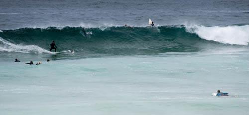 s_sydney_bondi_surf