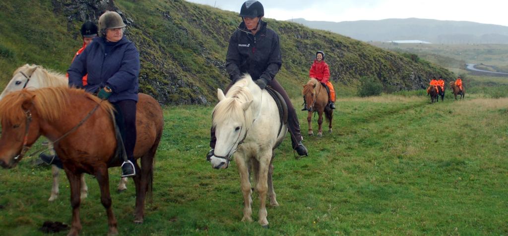 site_cavalos