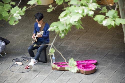 Perth musician