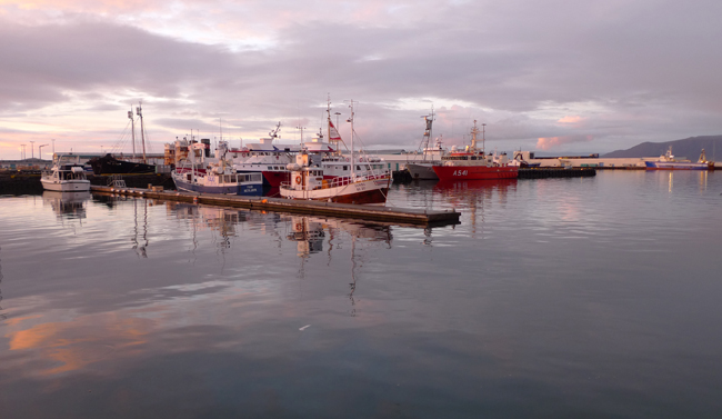 Porto de Reykjavik