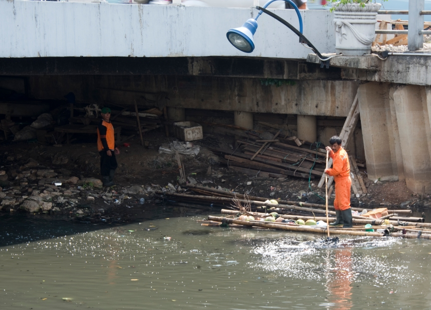 transporte de cocos no rio
