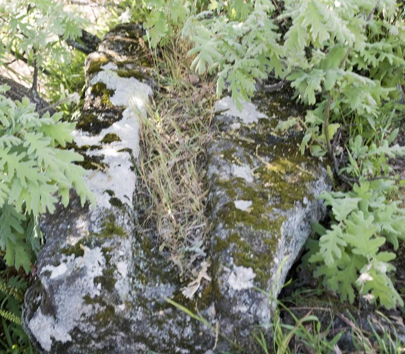 pedra de canal de água