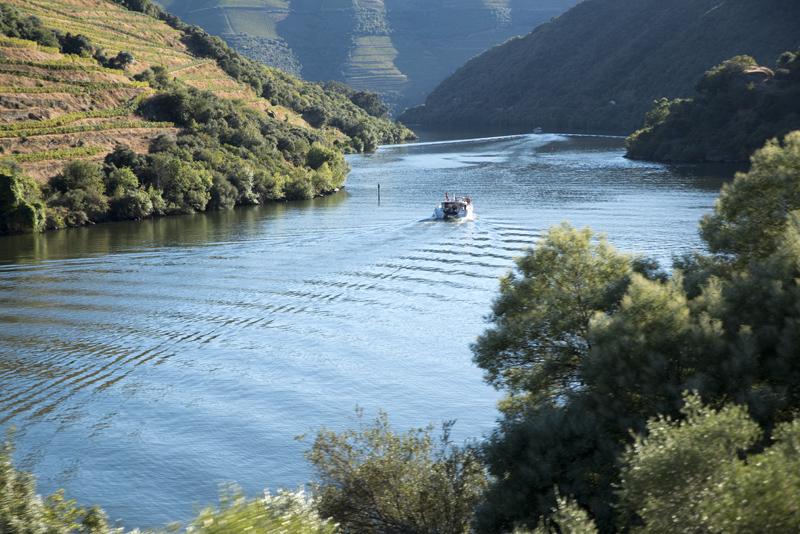 Douro com embarcações turísticas