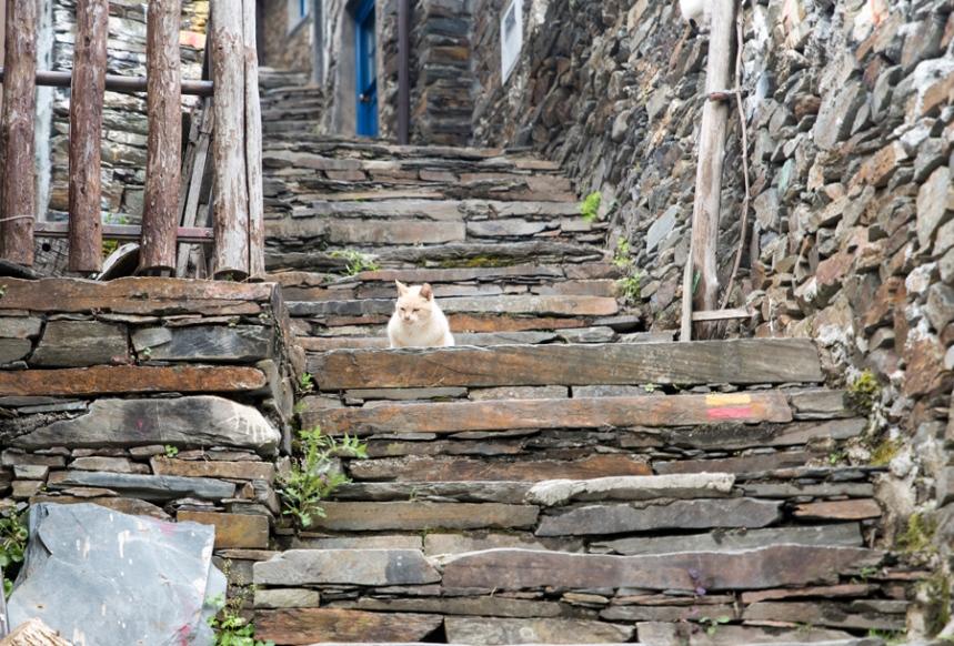 Escadaria a caminho da ribeira