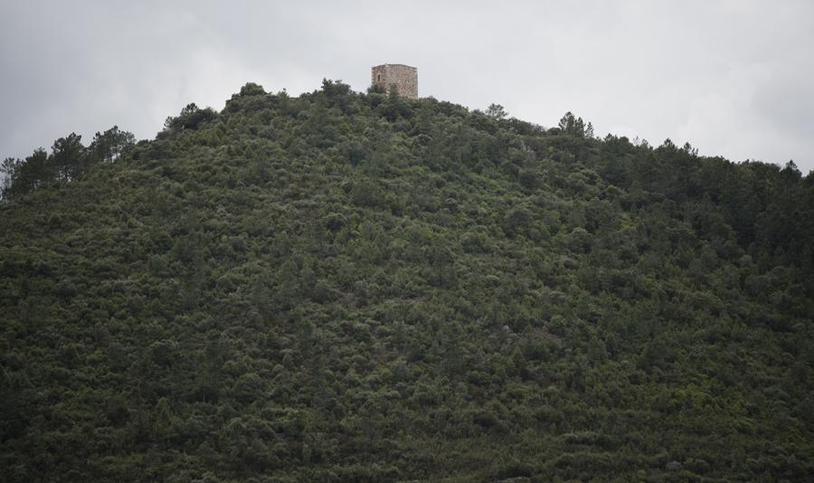 Castelo do Rei Vamba