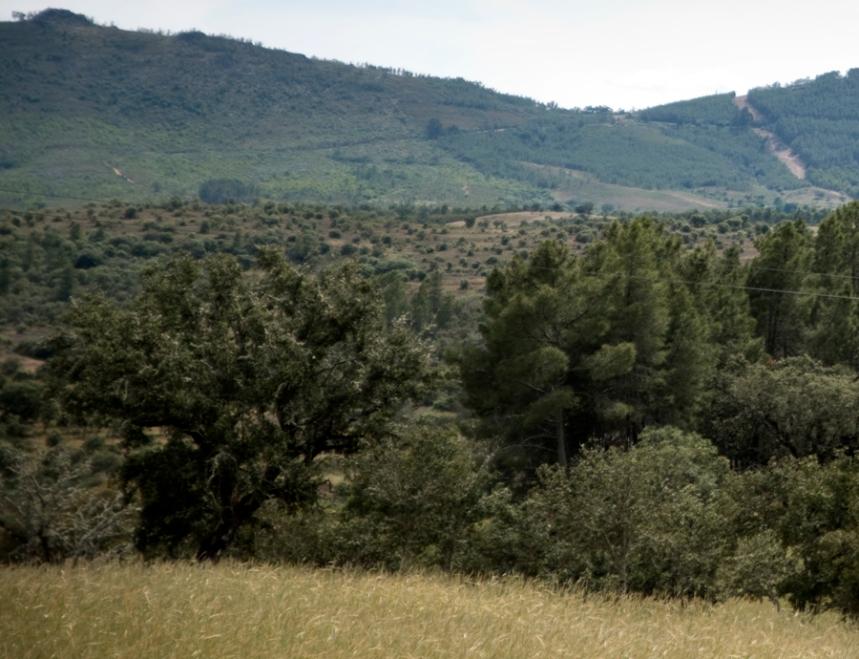 Serra antes de Espanha