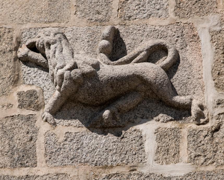 Leão de Judá na Casa do Gato Preto