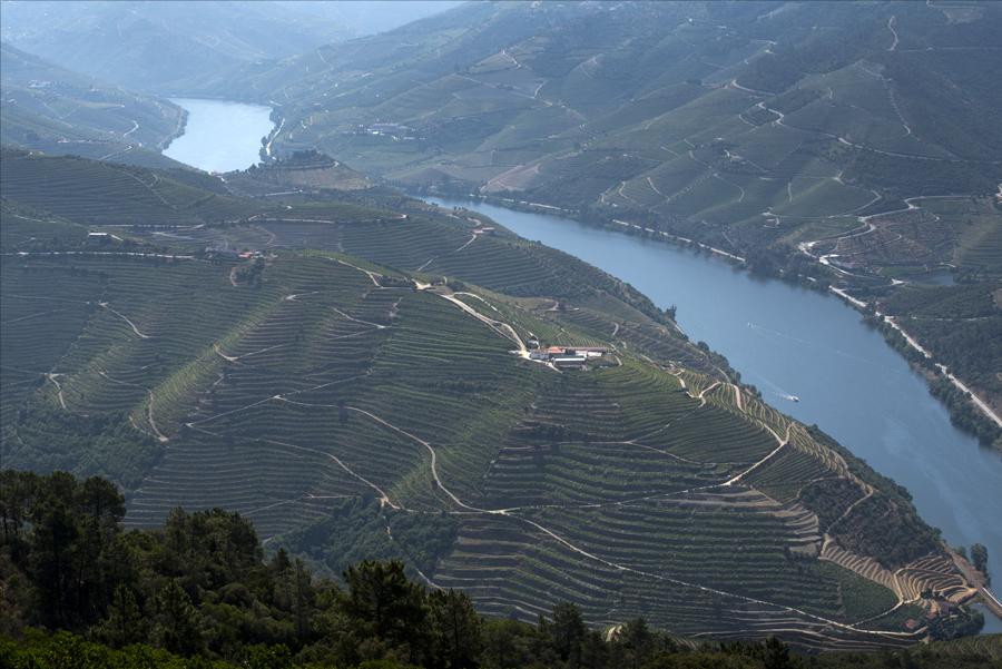 Vista do Douro a partir do miradouro