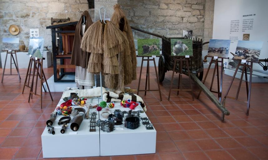 Museu de Castro Daire