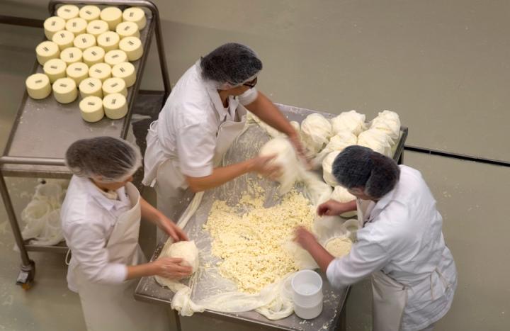 Queijeiras a preparar o queijo