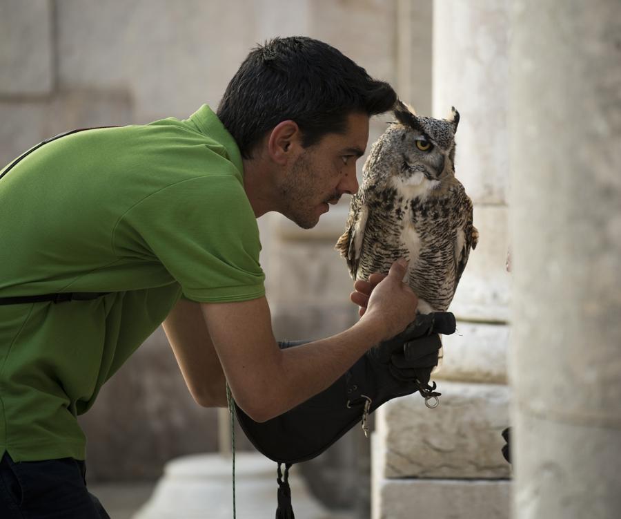 José Vidal com uma das aves