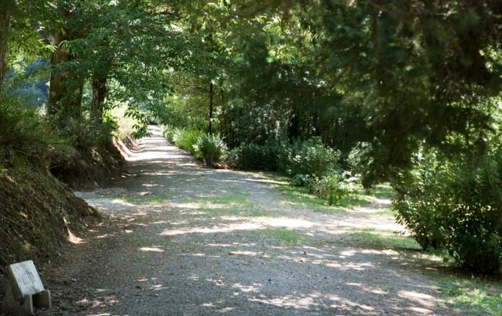 O parque está divido em várias áreas