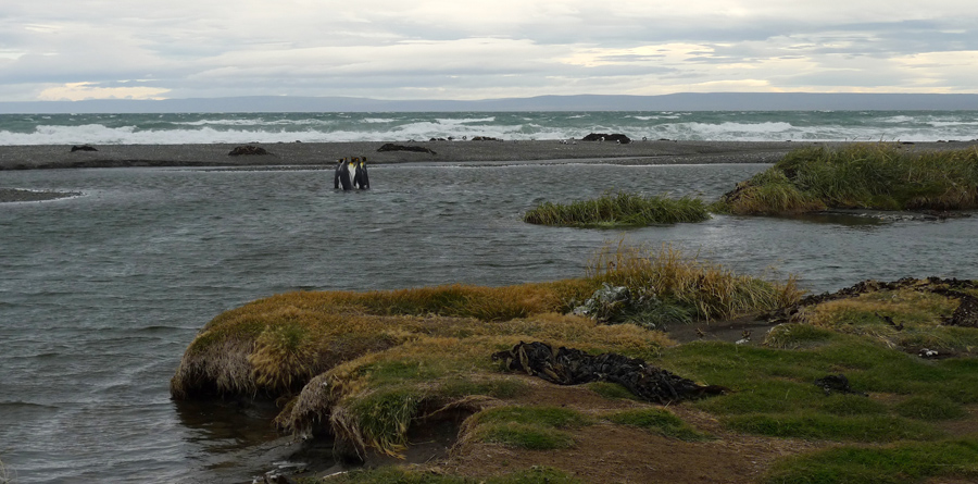 A baía tem uma extensão grande e fica numa zona plana
