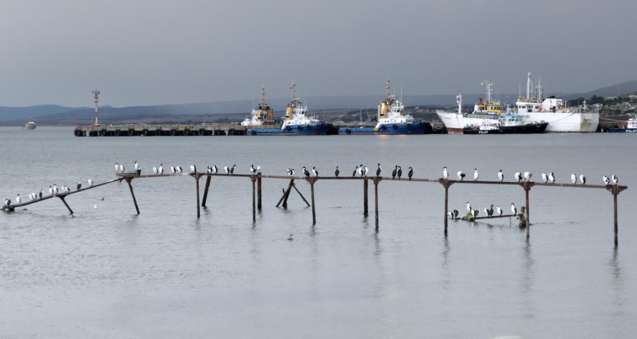 Porto de pesca no estreito Magalhães
