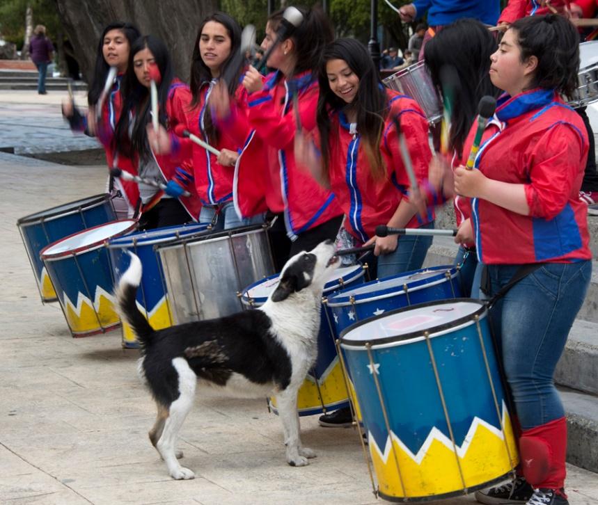 Grupo de tambores