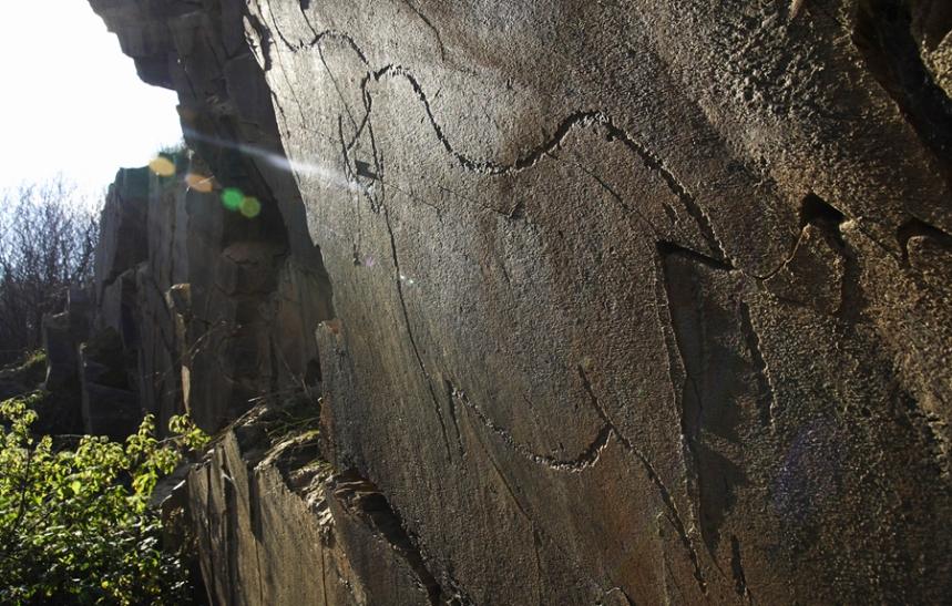 Gravuras Rupestres do Côa ©António Manuel Garrido Jerónimo