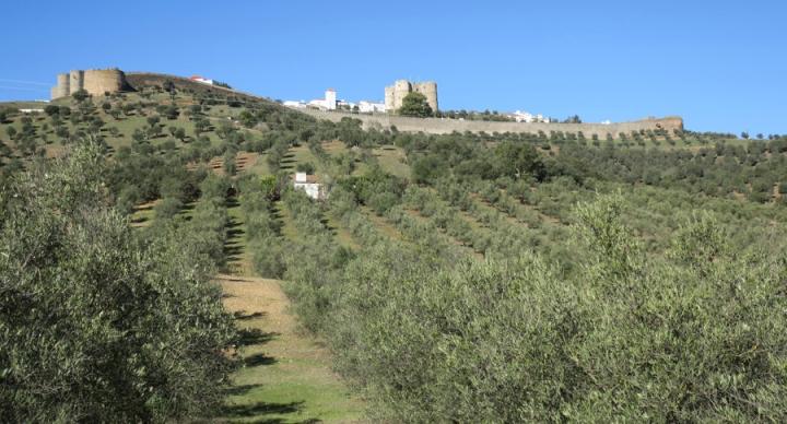 O castelo e as muralhas