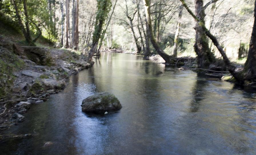A Ribeira de Alge passa num vale profundo