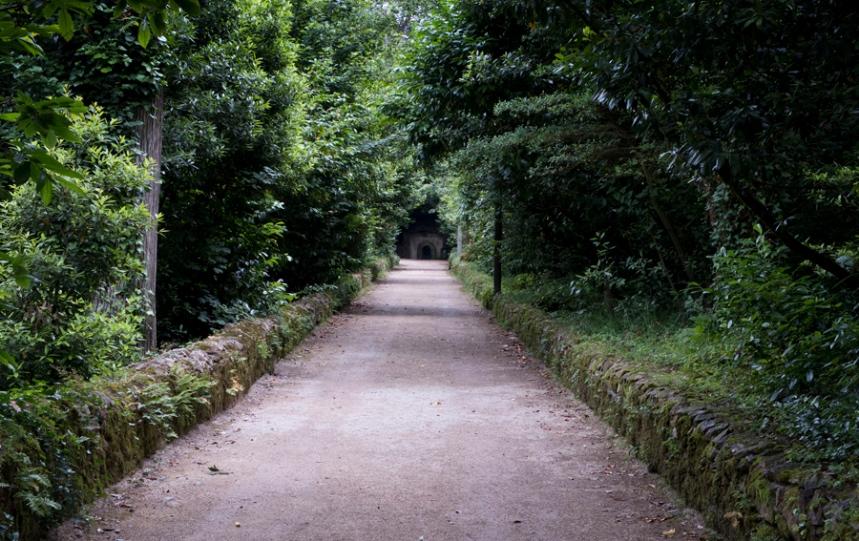 Longos caminhos na sombra das árvores e em silêncio