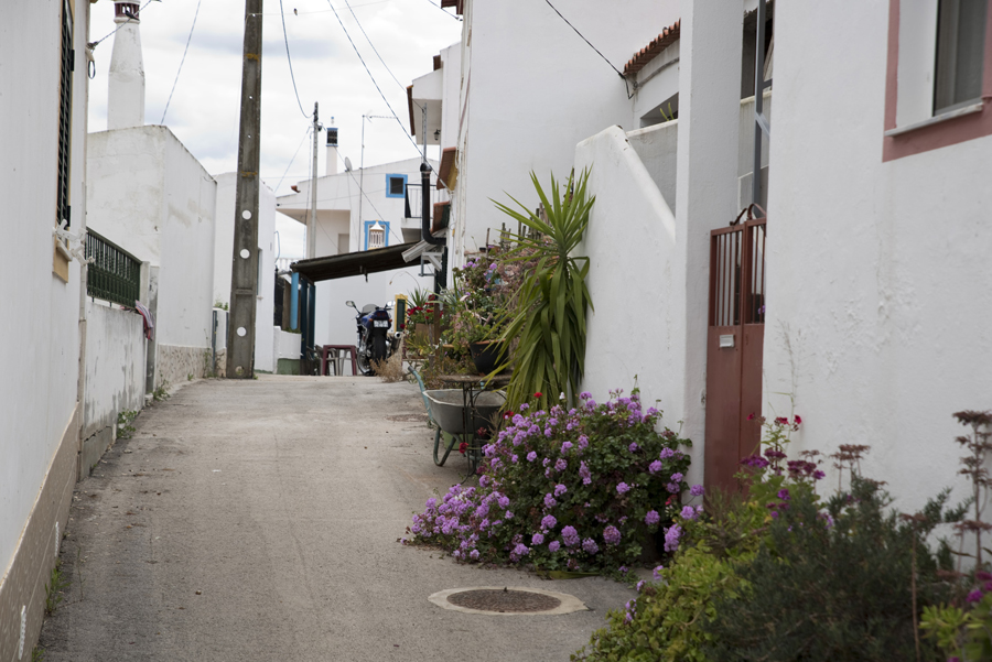 Rua de Guerreiros do Rio