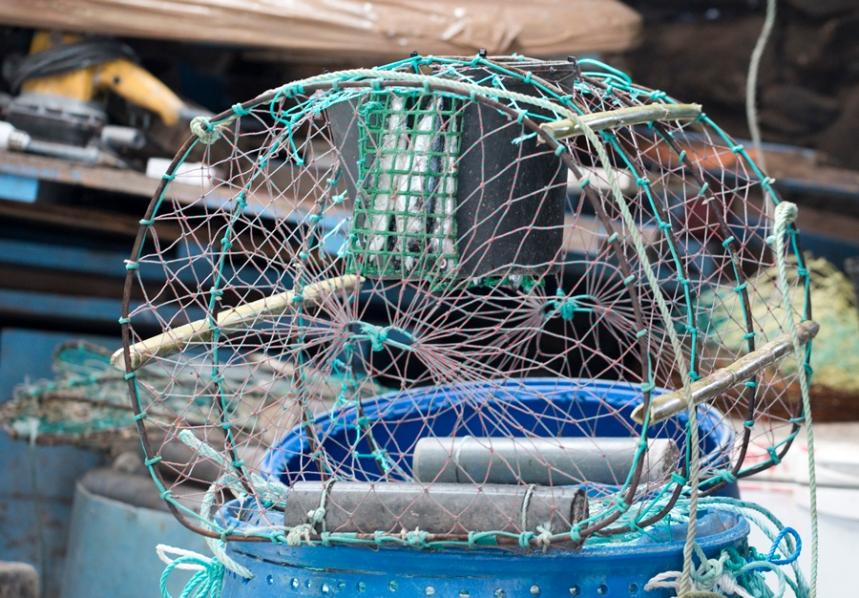 Cofre para a pesca da lagosta