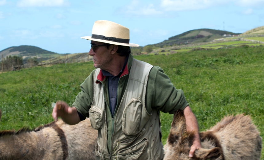 Franco na quinta com alguns dos 15 burros