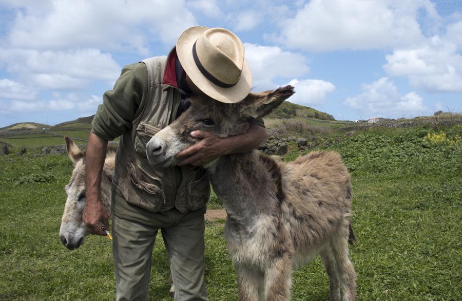 """Franco """"cumprimenta"""" um dos burros"""