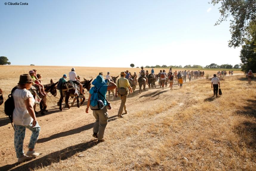 Passeios com burros de Miranda ©Claudia Costa