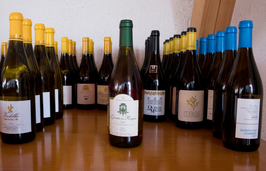 Vários vinhos da Quinta dos Roques