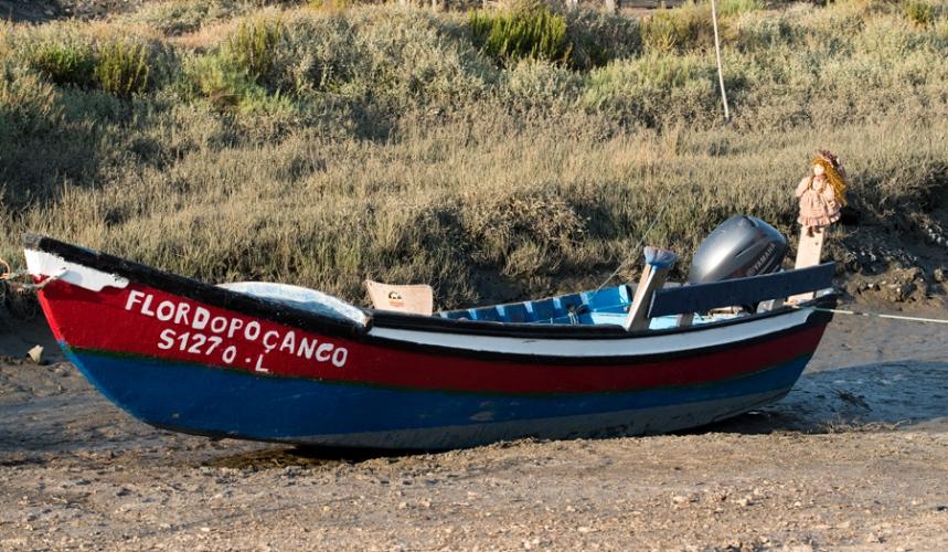 Barcos que fazem uma visita pelo estuário do Sado