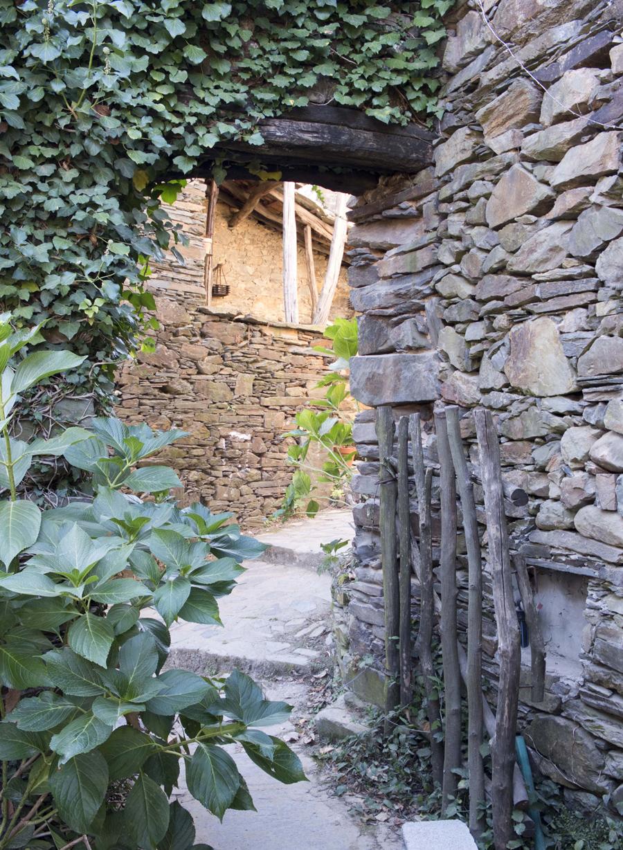 Caminhos estreitos por onde passa a vegetação que se apropria dos muros
