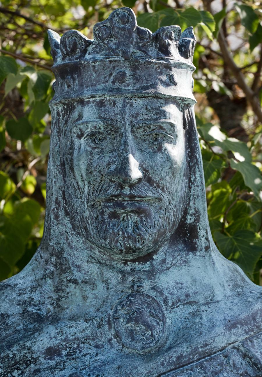 D. Afonso IX