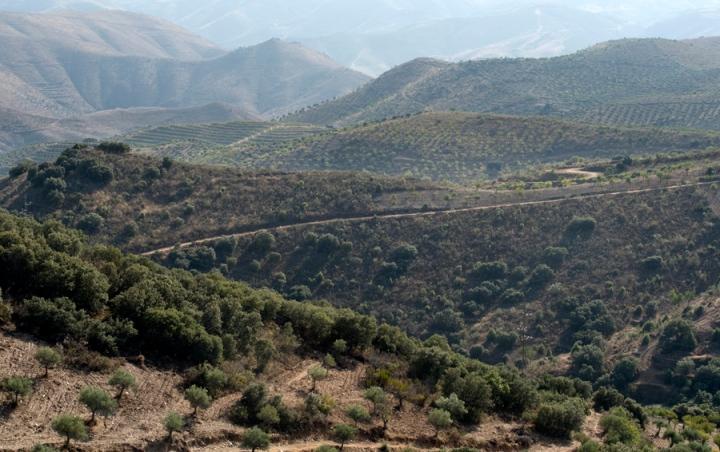 Vista para o vale do Côa