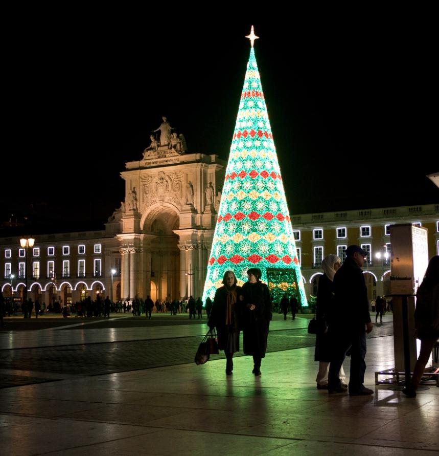 Árvore no Terreiro do Paço em Lisboa