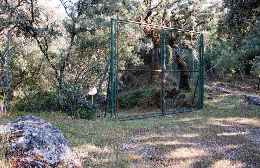 Com os trabalhos arqueológicos a gruta encontra-se encerrada ao público. Pode-se ver do exterior.