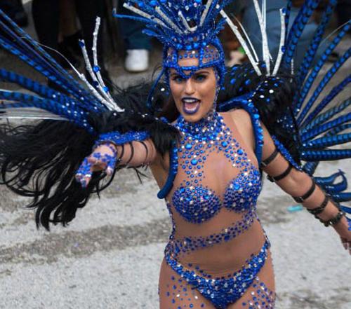 Carnaval luso-brasileiro da Bairrada ©  CM Mealhada
