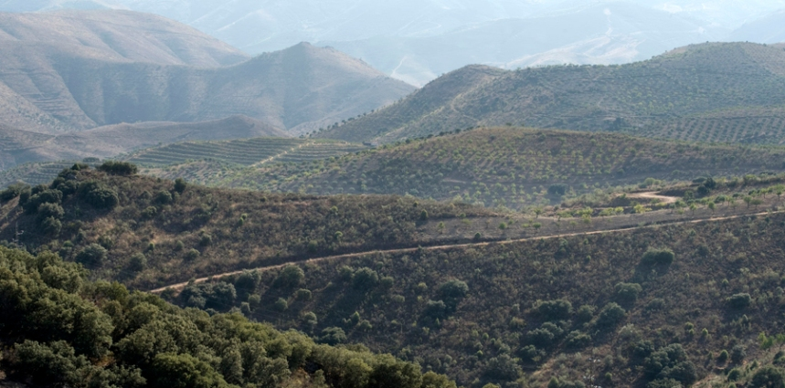 As cordilheiras permitem uma grande visibilidade entre os montes mais altoes