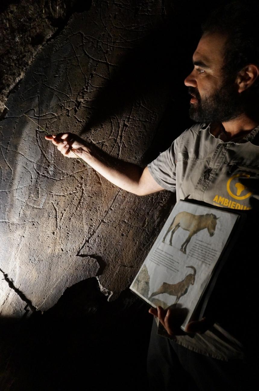 Detalhes das figuras de animais gravadas no xisto