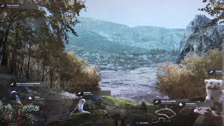 Ilustração no Ecomuseu do Vale Glaciar do Zêzere em Manteigas