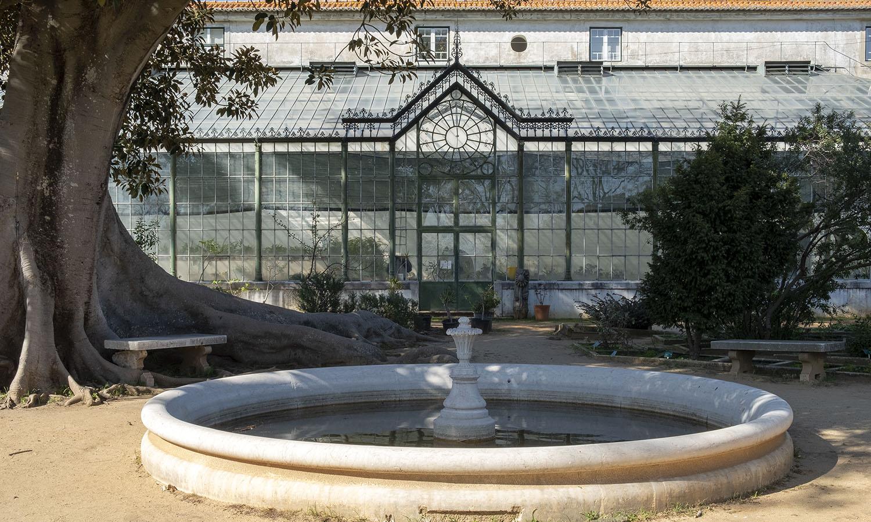 site_botanico_ajuda_DSCF9686