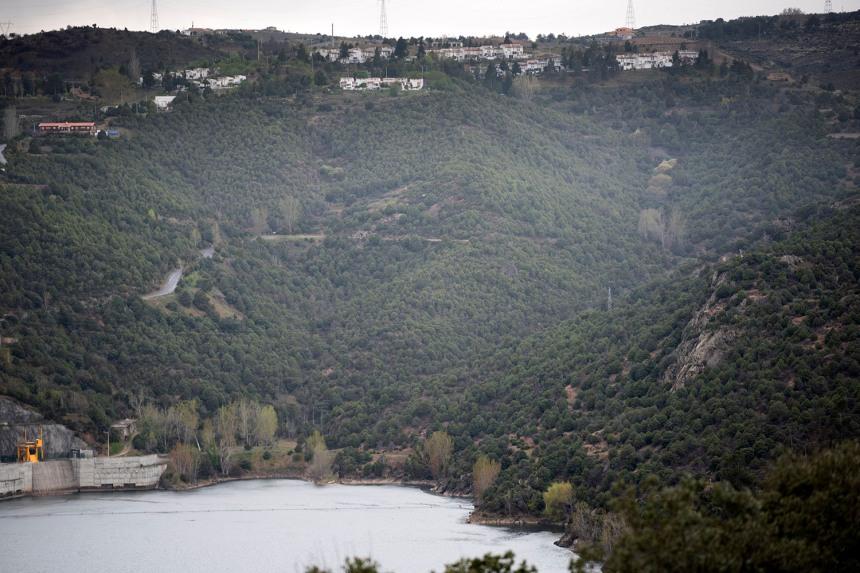 O Cardal do Douro no alto da serra