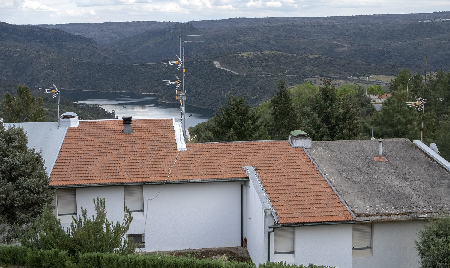 Cardal do Douro