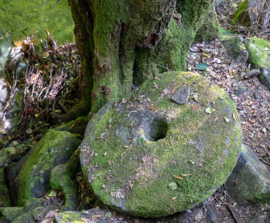 site_pedra_ferida_1920
