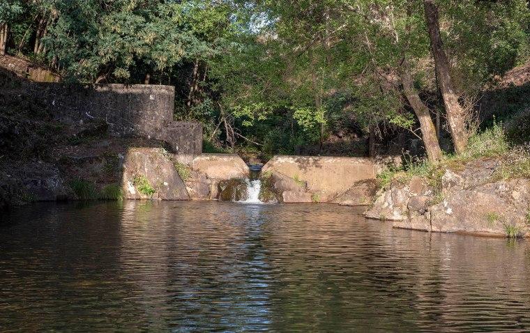 site_loucainha_1953