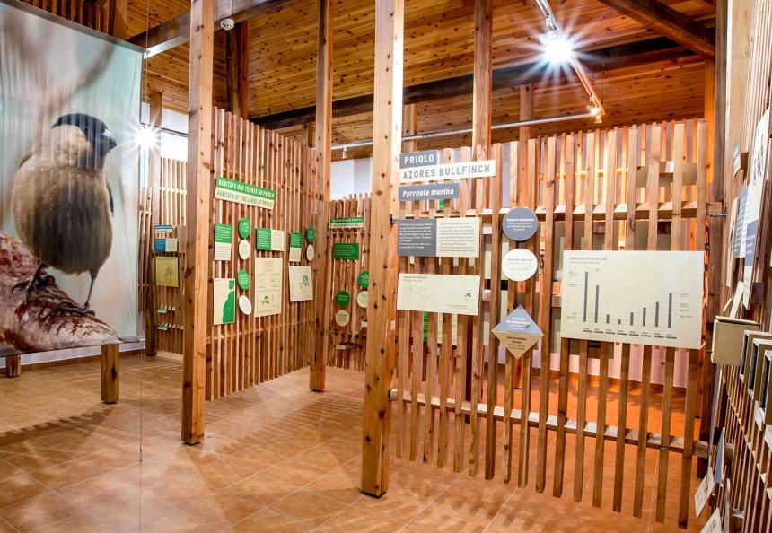 Os projetos são muito valorizados nos Açores e conseguiram boa reputação no estrangeiro © SPEA