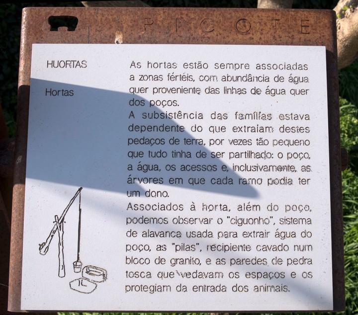 site_picote_hortas_DSCF0170