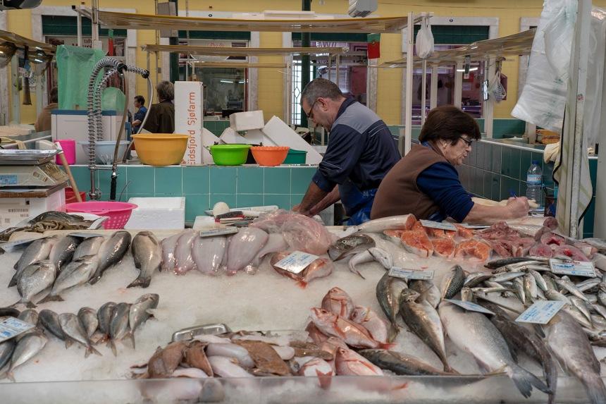 site_mercado_vila_franca_6560