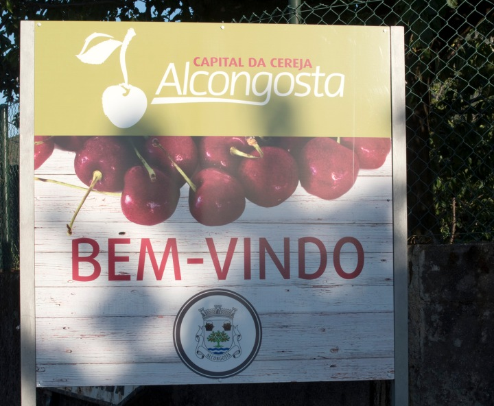 site_alcongosta_cereja_0214