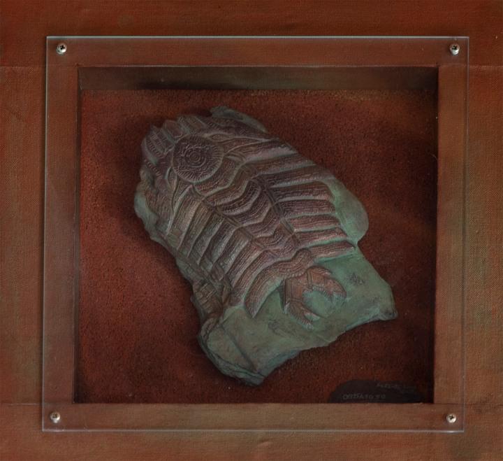 site_museu_trilobites_6108